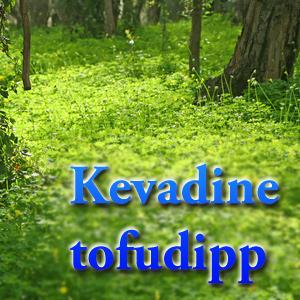 Retsept - kevadine tofudipp - Merike Tärk soovitab