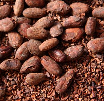 Kakaooad - kakaonibsid