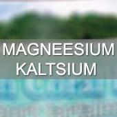 Magneesium, kaltsium