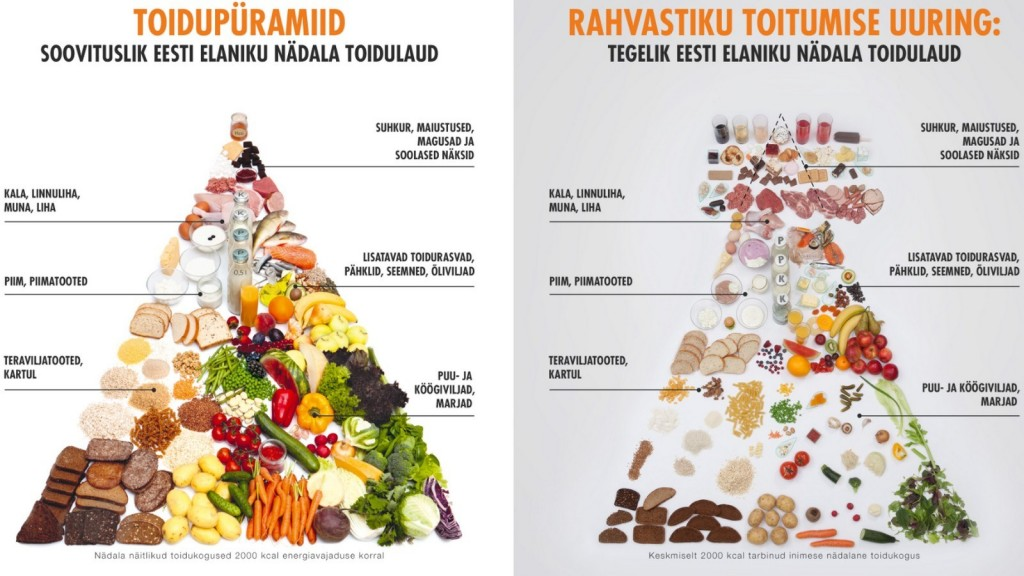 toidupüramiid-2017